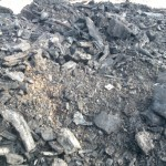 Full_scale_biosolids_wood